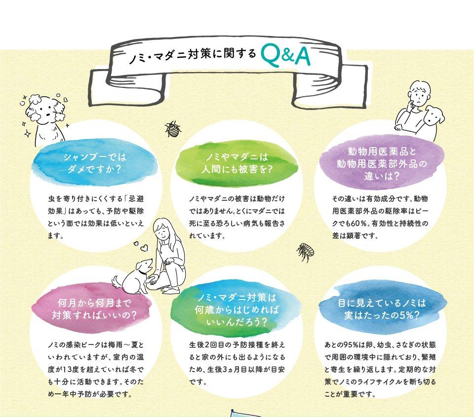 ノミ・マダニ対策に関するQ&A