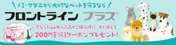 6ピペット以上ご購入時に使える200円割引クーポン